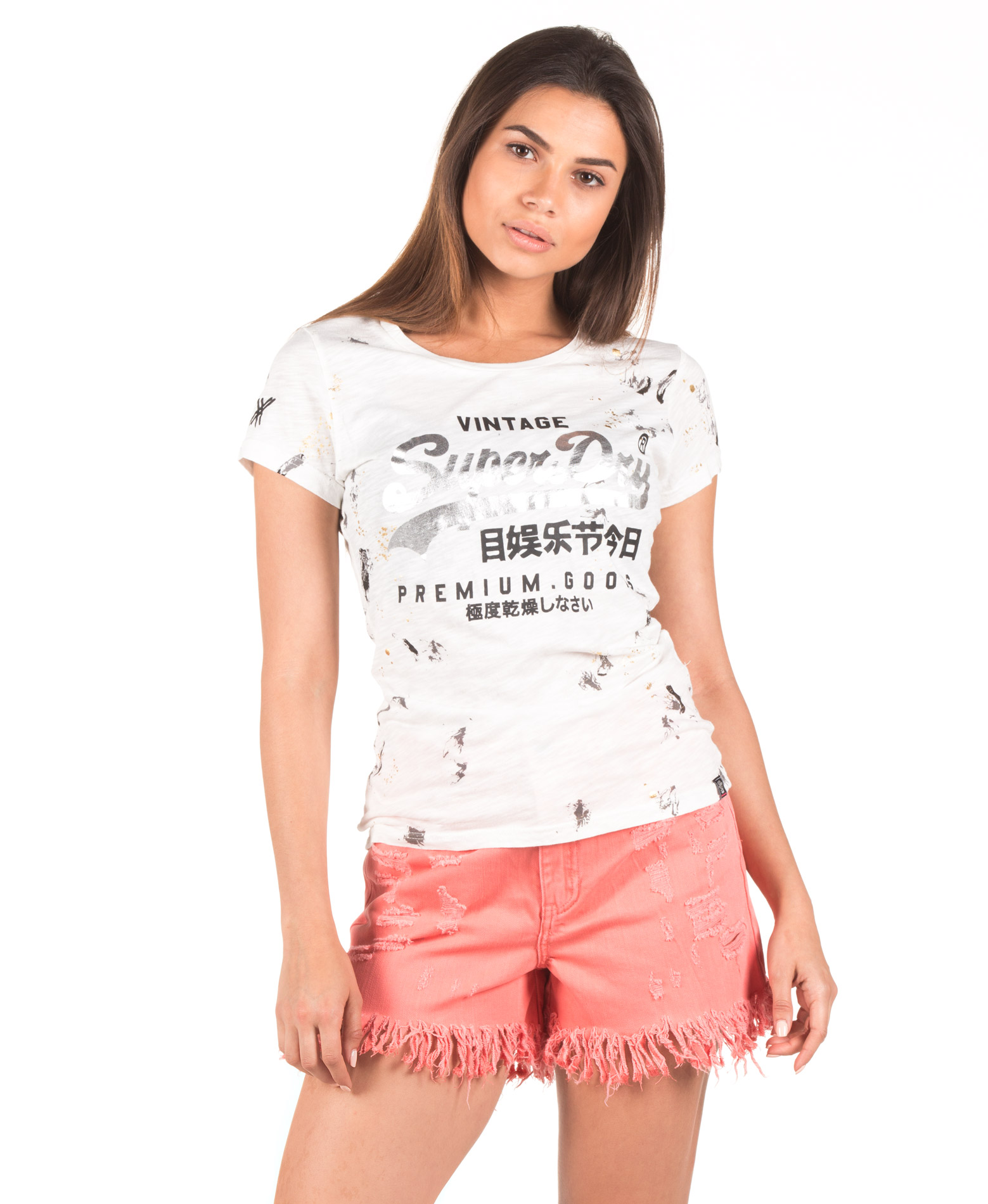 SUPERDRY D2 PREMIUM GOODS DOODLE ENTRY TEE G10002FQ-OO5 Εκρού αξεσουάρ
